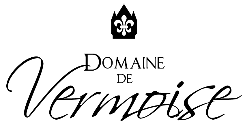 Logo vermoise partenaire CJBOX Location borne selfie photobooth Troyes Aube